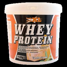 Whey Protein - reines Molkeneiweiß 2500g